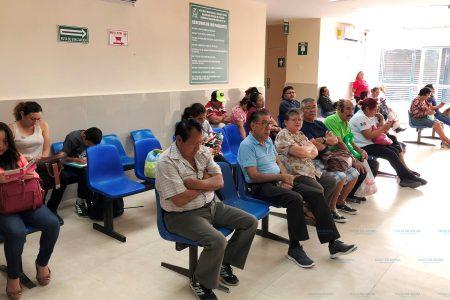 Atípica ausencia de dengue en este principio de año en Yucatán