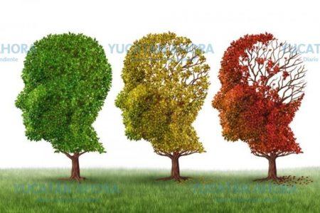 Los yucatecos, con baja incidencia de mal de Parkinson y Alzheimer