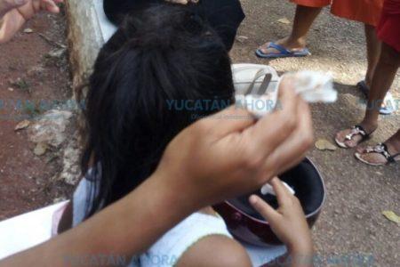 Monos jalonean a niña en zoológico yucateco; la madre, con el celular