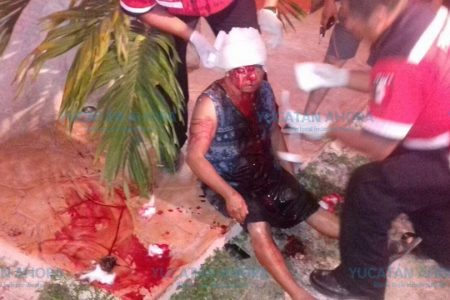 Feroz ataque de un pitbull contra una mujer: le desfigura el rostro