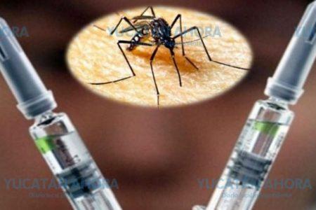 Descartan pronta aplicación masiva de la vacuna contra el dengue