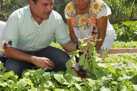 Los gobiernos deben ser cercarnos y de contacto con la gente: Renán Barrera