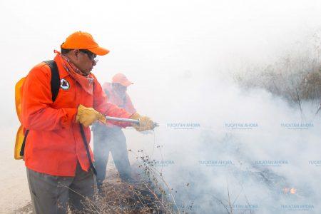 Colillas de cigarros causan el 70 por ciento de los incendios en Yucatán