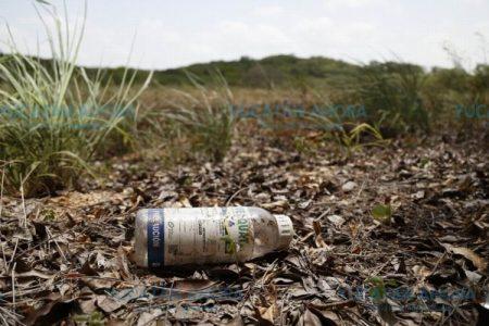 Insisten: los agroquímicos están contaminando el agua de Yucatán