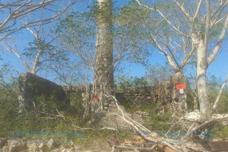 Lo que poco se sabe tras la destrucción de la hacienda San Pedro Cholul