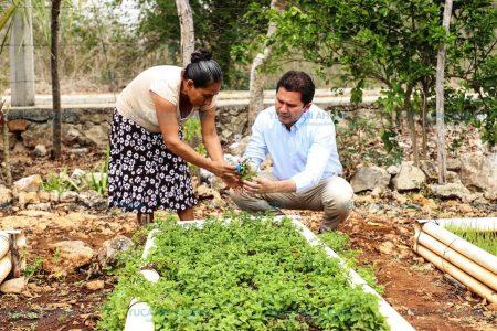 Los apoyos se traducen en una mejoría de la economía familiar: Sahuí