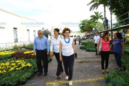 Vuelve el Camino de las Flores al Parque de Mejorada