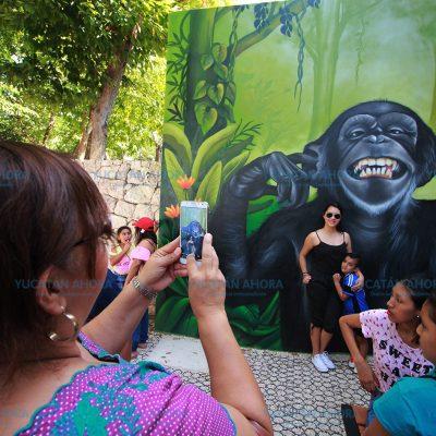 Aviso: este lunes no trabajan los zoológicos Animaya y del Centenario