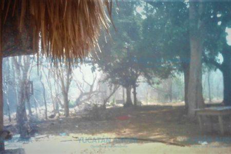 Incendio pone en peligro casas en el sur de Yucatán