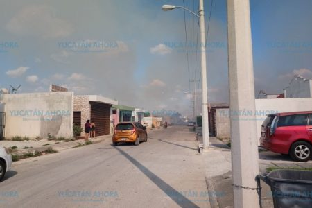 Fuego arrasa con 30 hectáreas en el norte de Mérida