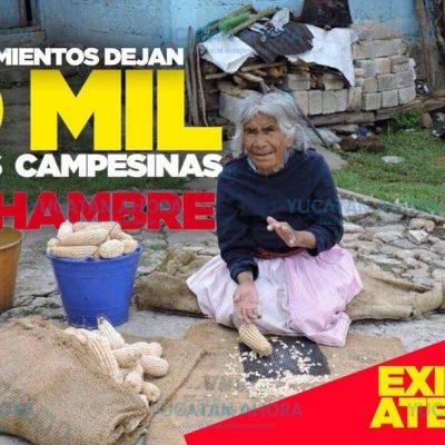 Cien mil campesinos afectados por incumplimiento en entrega de apoyos