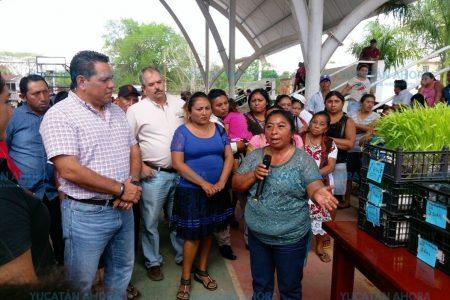 Yucatán, con buen rumbo en materia agropecuaria