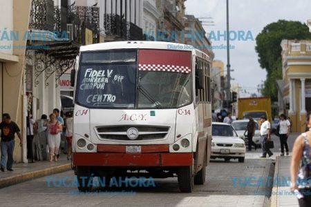 Transportistas insisten en alza de tarifas, pero aún no les dan el sí
