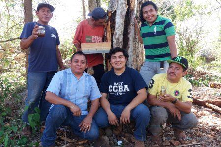 Al rescate de un oro ámbar que cuidaban los mayas hace siglos