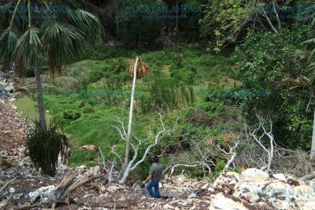 Rellenan con escombro casi en su totalidad un cenote en rancho de Tizimín