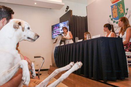 Fácil y ágil forma de dar en adopción tu mascota