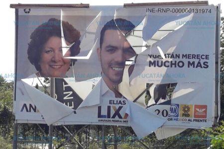 Destruyen propaganda electoral de Ana Rosa Payán y Elías Lixa