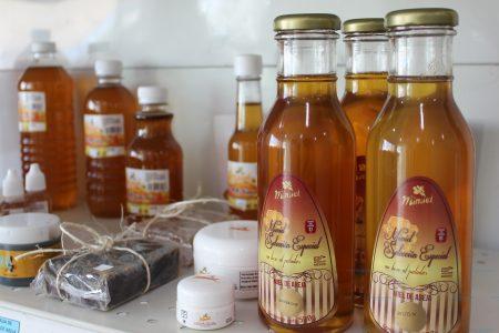 Miel yucateca símbolo de sabor, calidad e inocuidad