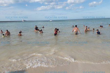 Playas limpias en Yucatán, pero Sisal y Dzilam 'rechinan de blancura'