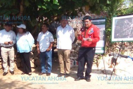 Gobernador por un día inaugura calles en Tixcacalcupul