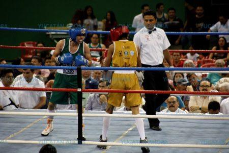 Fomenta Yucatán el 'semillero' de los futuros campeones mundiales de box