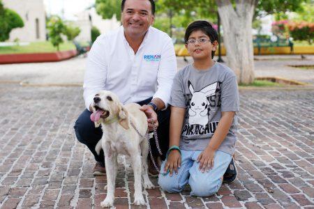Renán Barrera lanzará aplicación móvil para buscar mascotas extraviada