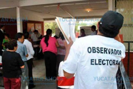 En escuelas y organizaciones buscan observadores electorales