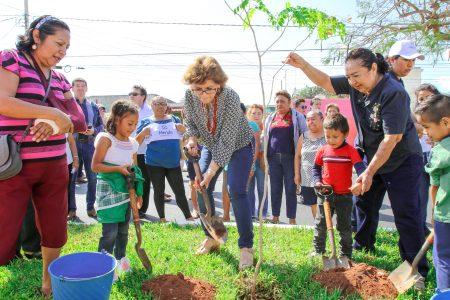 Mérida tiene más de 80 mil nuevos pulmones
