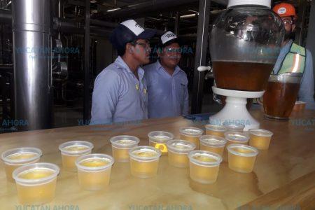 Con varios logros, cumple un año la Cervecería Yucateca