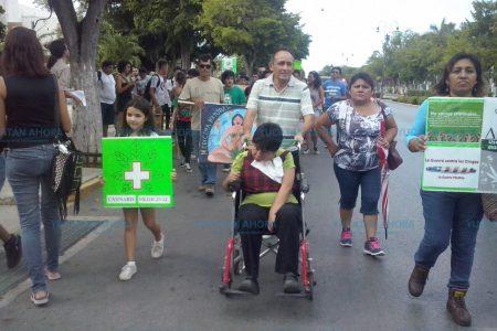Piden permiso para que puedan cultivar y consumir marihuana en Yucatán