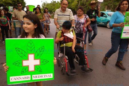 El uso medicinal, la otra parte que aboga por legalizar la marihuana