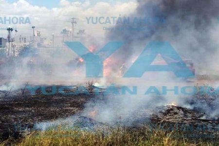 Incendio daña tres vehículos de lujo en Francisco de Montejo