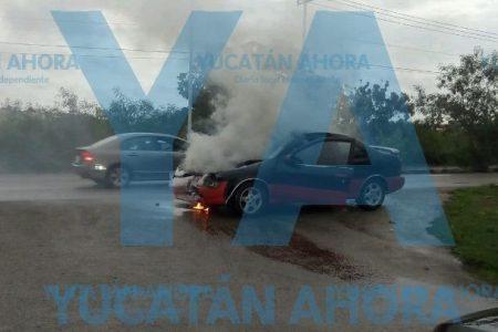 Estaquitas hace ver su suerte a un Lucino, en la Avenida Yucatán