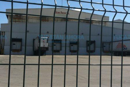 Fallece chofer en el interior de la planta de Bachoco en Umán