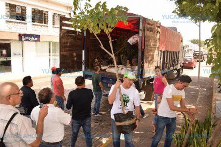 Reforestan la Tierra y las mentes de los niños de Yucatán