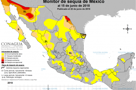 Cambio climático provoca semidesertificación de la Península de Yucatán