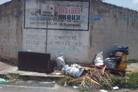 Montones de cacharros siguen en las calles de Mérida