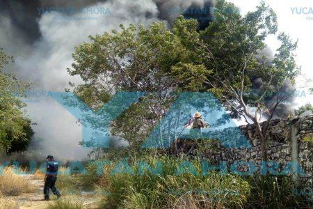 Peligro latente: las altas temperaturas queman zonas con maleza