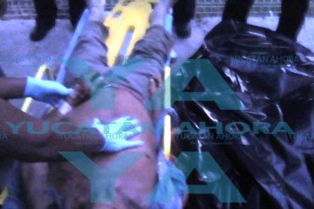 Un paro cardiaco le quita la vida tras ser atropellado por un vehículo
