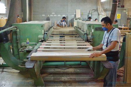 En Yucatán se producen los pisos de madera más preferidos del país y América Latina