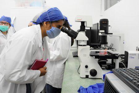 Cuatro días a pura ciencia para jóvenes, en el Cicy