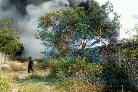 Calor extremo dispara los incendios en Yucatán