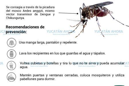Yucatán, único estado con mayor hombres infectados por zika