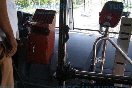 Boa de metro y medio viajaba sin pagar, en un autobús urbano de Mérida
