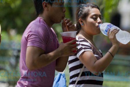 En emergencia 98 municipios de Yucatán por calor extremo