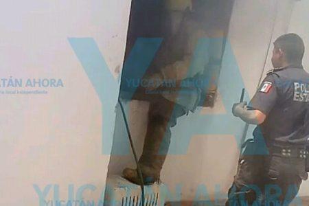 Se incendia casa en Francisco de Montejo: se queman el aire acondicionado y cortinas