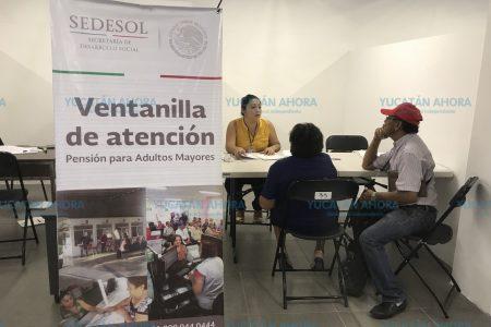 Ya empezó el pago de pensión para adultos mayores en Yucatán
