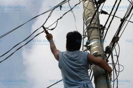 Recibe mortal descarga tratando de robar cables de la CFE