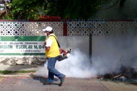 México, el primer país de Latinoamérica en controlar el dengue