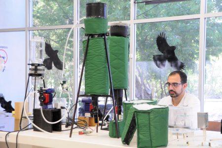Producen biogás a partir de sargazo en Yucatán